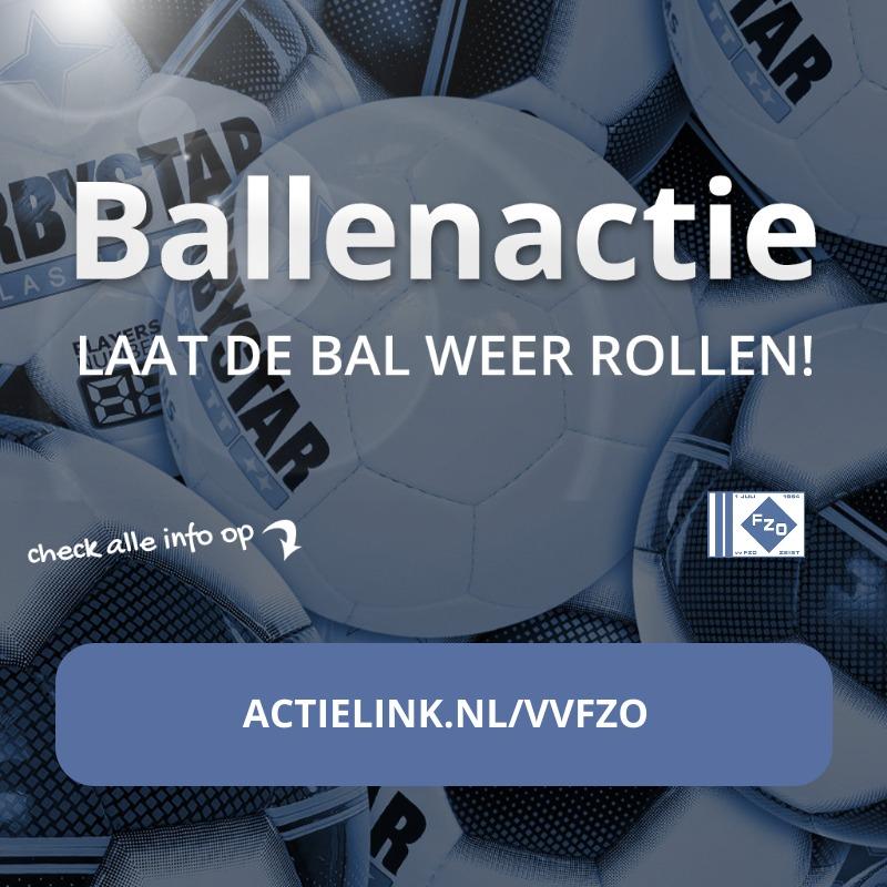 Ballenactie